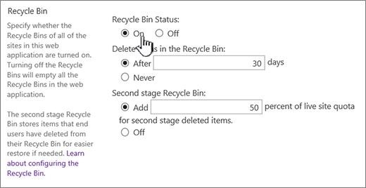 Раздел параметров корзины на странице общих параметров веб-приложения