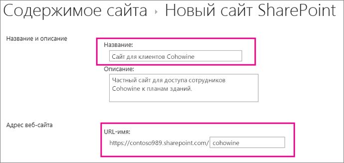 """В поле """"Название"""" введите имя дочернего сайта, а в поле рядом с URL-адресом укажите имя клиента."""