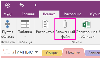 Screenshot of the Insert File Attachment button in OneNote 2016.