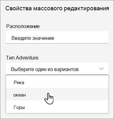 Снимок экрана: область сведений с совокупность значений