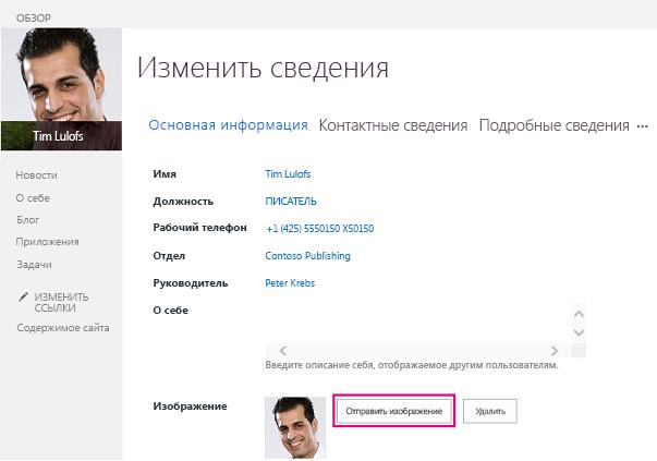 """Снимок экрана: окно SharePoint с выделенной кнопкой """"Отправить рисунок"""""""