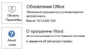 """Если Office был установлен с помощью технологии """"нажми и работай"""", сведения о приложении и обновлении выглядят следующим образом."""