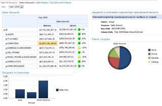 Пример панели мониторинга, размещенной на сервере SharePoint Server 2010