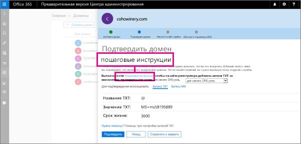 На странице проверки выполните инструкции для добавления записи TXT на свой узел DNS