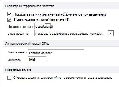 Панель Общие параметры Word 2010