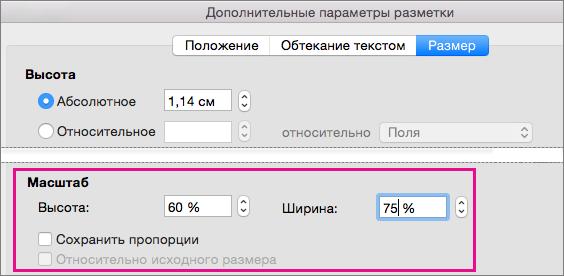 """В окне """"Дополнительные параметры разметки"""" на вкладке """"Размер"""" выделены параметры масштаба."""