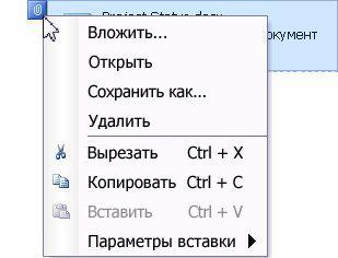 Меню вложенного файла