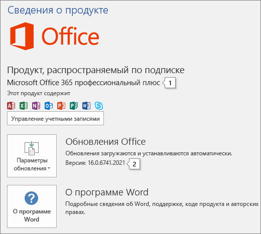 """Снимок экрана со страницей """"Учетная запись"""", на которой отображаются название продукта Office и полный номер версии."""