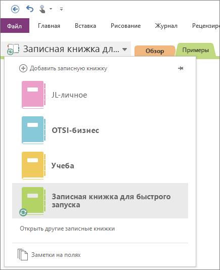 Снимок экрана: список открытых записных книжек