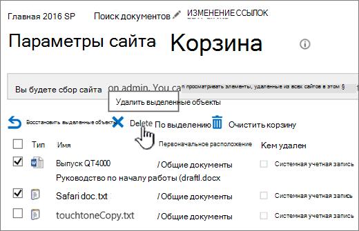 """Корзина SharePoint2016 с выбранной кнопкой """"Удалить"""""""