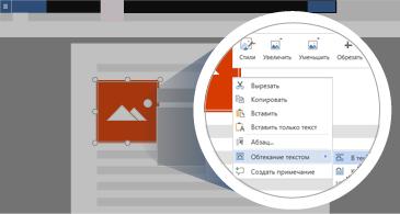 Документ с выделенным изображением и увеличенной областью, в которой показаны все доступные параметры для управления изображением