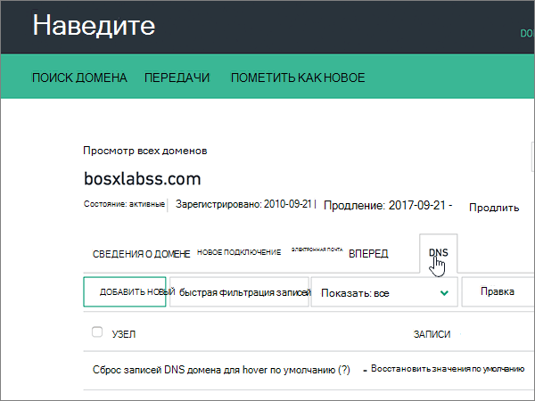 Выберите вкладку DNS