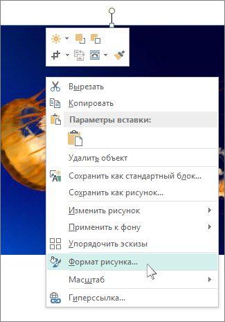 """Снимок экрана с параметрами """"Формат рисунка"""" в Publisher."""