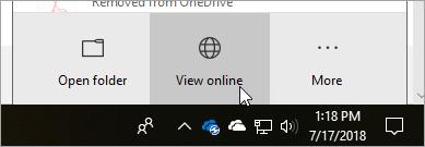 """Снимок экрана: кнопка """"просмотреть в Интернете"""""""