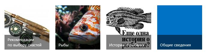 Четыре плитки категории с изображениями рыбалки и заголовками