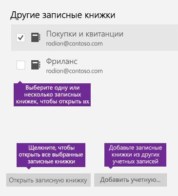 """Снимок экрана: окно """"Другие записные книжки"""" в OneNote"""