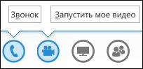 Снимок экрана: кнопки управления звуком и камерой