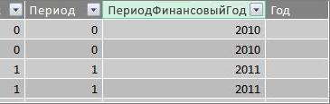 """Столбец """"Период финансовый год"""""""