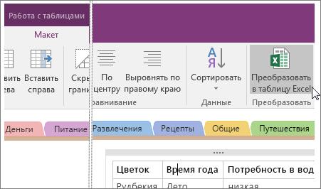 """Снимок экрана: кнопка """"Преобразовать в таблицу Excel"""" в OneNote2016."""