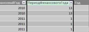 """Столбец """"Период в финансовом году"""""""