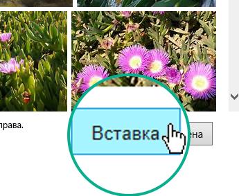 """Нажмите кнопку """"Вставка"""" в правом нижнем углу диалогового окна."""