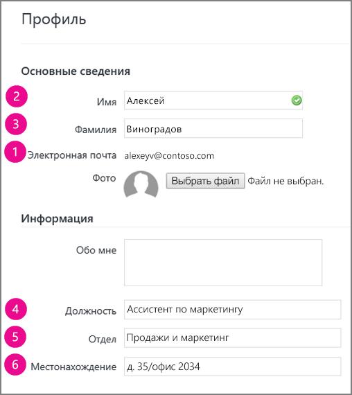 Снимок экрана: поля профиля, синхронизируемые в Yammer