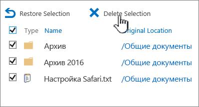 """Вторая корзина SharePoint2016, в которой выбраны все элементы и выделена кнопка """"Удалить"""""""