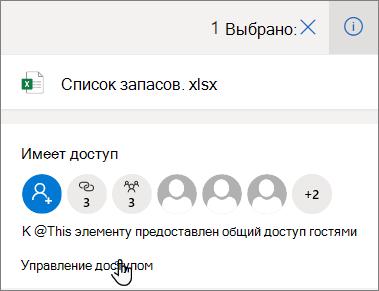 """Область сведений в OneDrive для бизнеса, в которой отображается ссылка """"Управление доступом"""""""