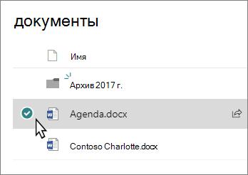 Снимок экрана: Библиотека с выбранным файлом