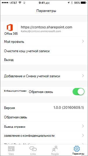"""Снимок экрана: часть вкладки """"Параметры"""" в приложении SharePoint"""