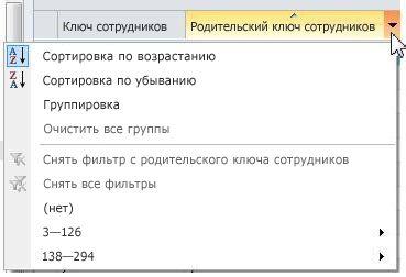 Параметры сортировки, группировки и фильтрации во внешних списках