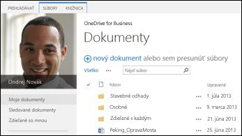 OneDrive for Business na SharePoint 2013