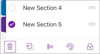 Tlačidlo odstránenia sekcie na paneli s ponukami v iPhone.