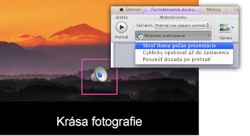 Skryť ikonu počas prezentácie