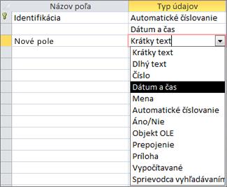 Pridanie poľa typu Date/Time v návrhovom zobrazení