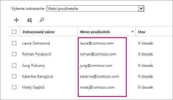 Stĺpec Meno používateľa v Centre spravovania služieb Office 365.