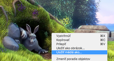 Snímka obsahujúca obrázok a vybratý príkaz Uložiť ako obrázok v kontextovej ponuke