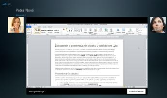 Snímka obrazovky s reláciou zdieľania so zobrazenou možnosťou Skutočná veľkosť