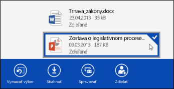 A file selected in SkyDrive Pro
