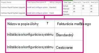 Dva riadky časového výkazu srôznymi kategóriami