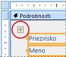 Volič rozloženia vo formulári v návrhovom zobrazení