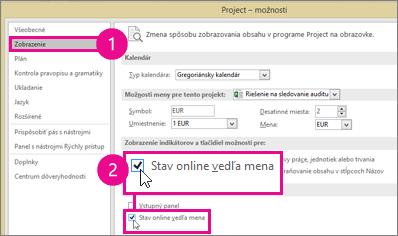 Project Options, Display tab