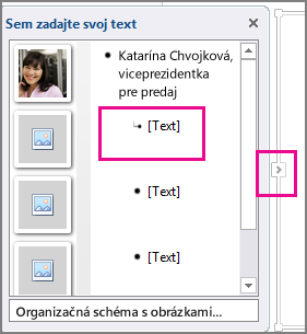 Tabla Text grafického prvku SmartArt so zvýraznenou položkou [Text] a zvýraznenými ovládacími prvkami na table Text