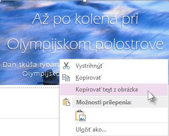 Obrázok ponuky otvorenej po kliknutí pravým tlačidlom myši, v ktorej sa zobrazuje príkaz Kopírovať text z obrázka.