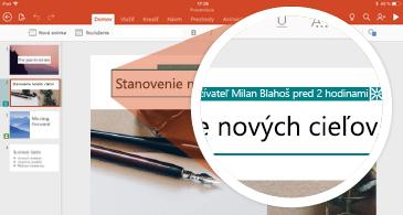 Snímka s revíziami a miniatúrou obsahujúcou značku revízie
