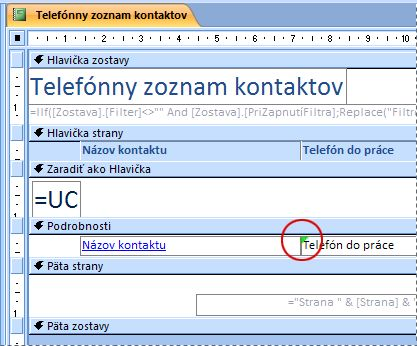 Zostava obsahujúca textové pole s chybne napísaným identifikátorom