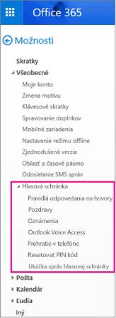 Možnosti hlasovej schránky na table možností e-mailu v Outlooku