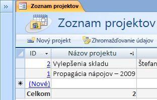 Šablóna databázy projektov
