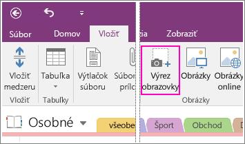 Snímka obrazovky zobrazujúca tlačidlo vloženia výrezu obrazovky vo OneNote 2016.