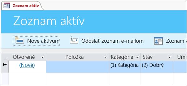 Formulár Zoznam aktív v šablóne databázy Access Aktíva